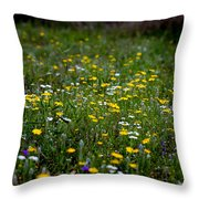 Field Of Mixed Flowers Throw Pillow