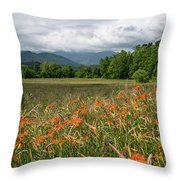 Field Of Orange Daylilies Throw Pillow
