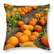 Field Of Pumpkins Card Throw Pillow