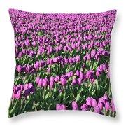 Field Of Purple Flowers Throw Pillow