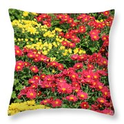 Field Of Red And Yellow Flowers Throw Pillow