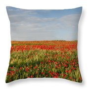 Field Of Red Poppy Anemones Late In Spring  Throw Pillow