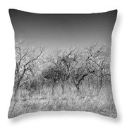Field Of Trees Throw Pillow