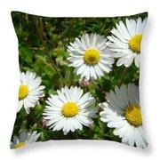 Field Of White Daisy Flowers Art Prints Summer Throw Pillow
