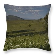 Field Of White Flowers Throw Pillow