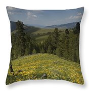 Field Of Yellow Flowers Throw Pillow