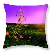 Field Rye And Ear Throw Pillow