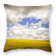 Field With Dramatic Sky. Throw Pillow