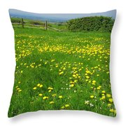 Field With Yellow Flowers Throw Pillow