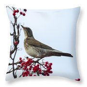 Fieldfare - 2 Throw Pillow
