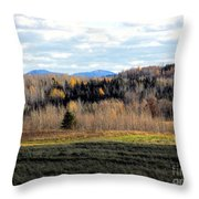 Fields And Folds Throw Pillow