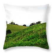 Fields In Glastonbury Throw Pillow