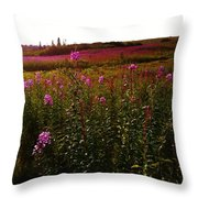 Fields In Pink Throw Pillow