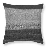 Fields Near Madison Throw Pillow