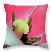 Fields Of Beauty 59 Throw Pillow