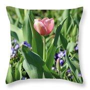Fields Of Beauty 60 Throw Pillow
