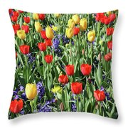 Fields Of Beauty 62 Throw Pillow