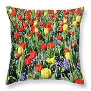 Fields Of Beauty 64 Throw Pillow