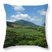 St. Kitts Fields Of Cane Throw Pillow
