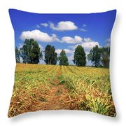 Fields Of Chopped Flowers At Nir Banim Throw Pillow