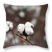 Fields Of Cotton Throw Pillow
