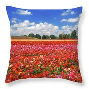 Fields Of Flowers At Nir Banim Throw Pillow