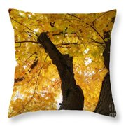 Fields Of Gold Above Our Heads Throw Pillow