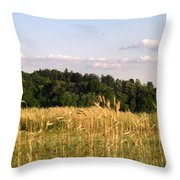 Fields Of Grain Throw Pillow