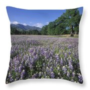 Fields Of Lupine And Owl Clover Throw Pillow