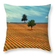 Fields Of Provence Throw Pillow