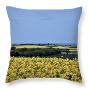 Fields Of Summer Throw Pillow