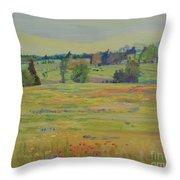 Fields Of Texas Wildflowers Throw Pillow