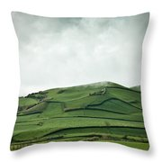 Fields Of The Hill Throw Pillow