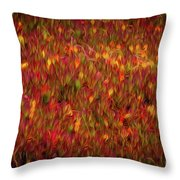 Fields On Fire Throw Pillow