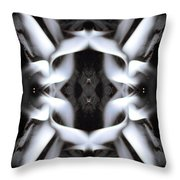 Fierce Flake 2795 Throw Pillow