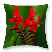 Fiery Lucifer Throw Pillow
