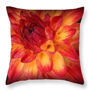 Fiery Red And Yellow Dahlia Throw Pillow