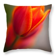 Fiery Tulip Throw Pillow