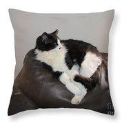 Figaro The Cat Throw Pillow