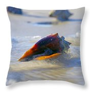 Fighting Conch On Beach Throw Pillow by Robb Stan
