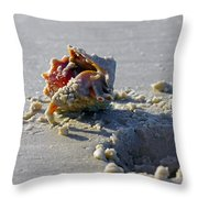 Fighting Conch On The Beach Throw Pillow by Robb Stan