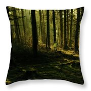 Fighting For Light Throw Pillow