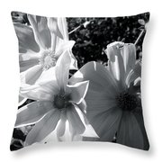 Fighting For The Sun Throw Pillow