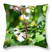 Fighting Throw Pillow