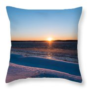 Fighting The Ice Throw Pillow