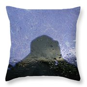 Figure In The Windshield Throw Pillow