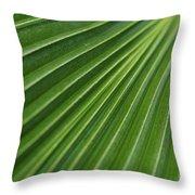 Fiji Fan Palm Throw Pillow