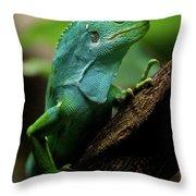 Fiji Iguana In Profile On Tree Branch Throw Pillow