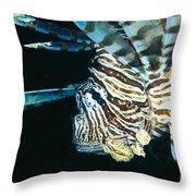 Fiji, Lionfish Throw Pillow
