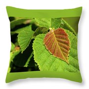 Filbert Leaf Throw Pillow